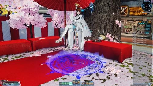 桜の花仕様