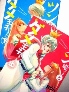 『ツン姫さまとダメ王子ちゃん(上・下)』